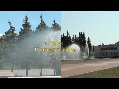 Фото видеогид Площадь у городского цирка