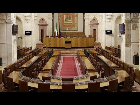 Vox volverá a dar su 'sí, quiero' a los presupuestos andaluces