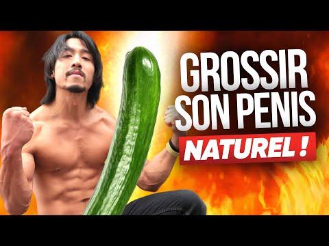 Quelle est la largeur et la longueur du pénis