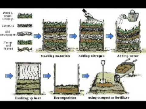 Bio gestión de residuos