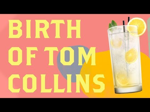 A Brief History of Tom Collins