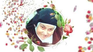 [O processo de beatificação de Nossa Mãe]
