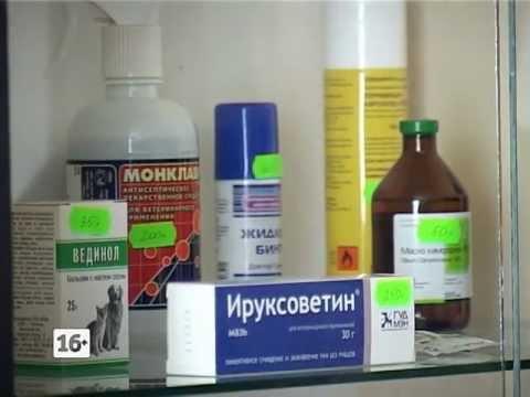 Сильный возбудитель для женщин быстрого действия в аптеке
