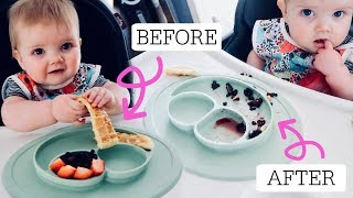 My 7 Month Old Eats A Full Plate Of Food [BLW Tips & Tricks]
