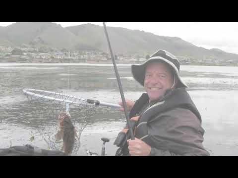 Metal Stringer Rockfish
