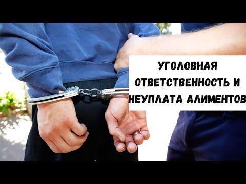 Уголовная ответственность за злостное уклонение от уплаты алиментов (157 УК РФ)