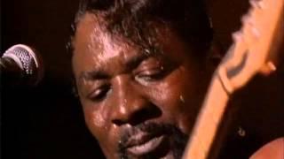 Catfish Blues (1991)