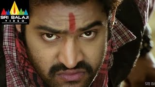 Shakti Telugu Full Movie Part 2/14  JrNTR Ileana  Sri Balaji Video