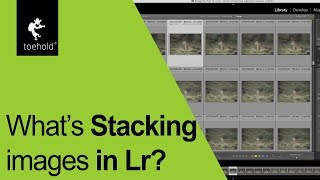 How to use the 'stacking' feature in Lightroom?