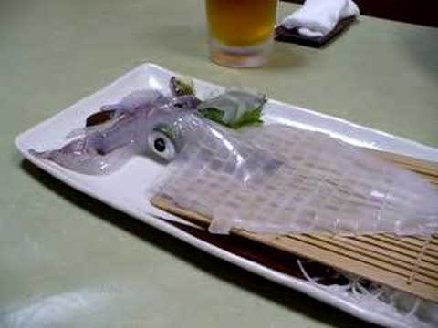 日本的可怕食物 活烏賊刺身