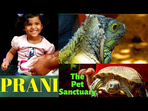 A day at PRANI - The Pet Sanctuary | Must Visit Place for Kids in Bangalore (India)