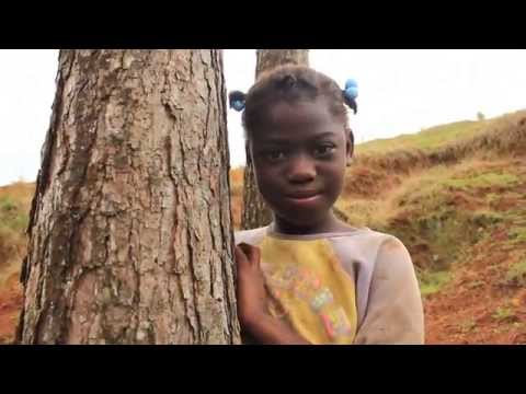 Plant 1,000 Trees to Help Women in Haiti!