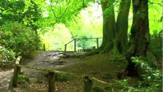 preview picture of video 'Keston Common explored'