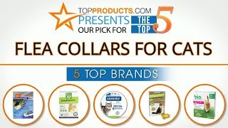 Best Flea Collars for Cats Reviews  – How to Choose the Best Flea Collars for Cats