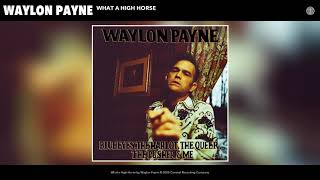 Waylon Payne What A High Horse
