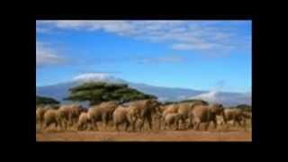 Tanzanian National Anthem