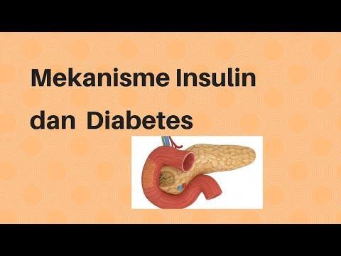 Medizin erhöhte Zucker im Blut