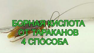 Как сделать приманку из борной кислоты от тараканова