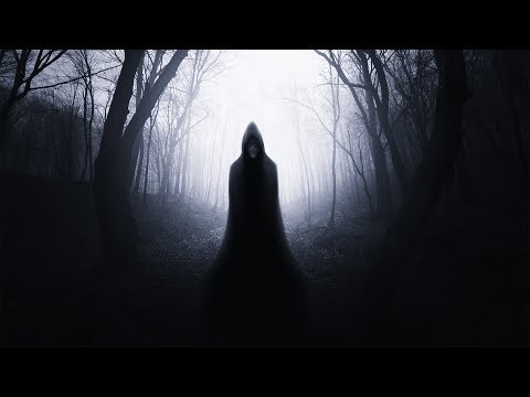 Skinwalker in The Woods\