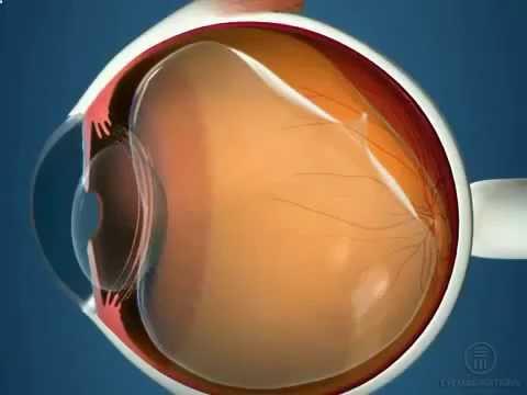 Зрение глаз как улучшить зрение