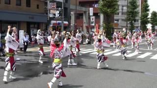 舞華(ひのよさこい2012・昼の流し・百花繚乱~心ひとつに~)