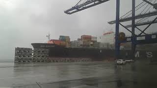 Chuvas e ventos causam estrago em Paranaguá