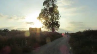 preview picture of video 'Sunset in the countryside of Israel (Moshav Tirat Yehuda)'