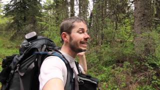 Trip video hiking to Logging Lake and Grace Lake.