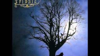 Forgotten Daylight - Winternight