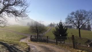 スイス発 リギ山麓町で朝散歩【スイス情報.com】