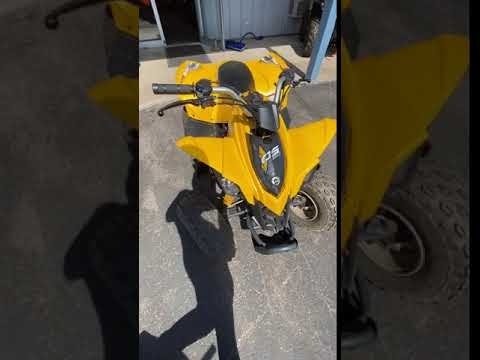 2013 Can-Am DS 90™ in Woodruff, Wisconsin - Video 1