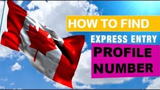 Where Can I Find My Express Entry Profile Number