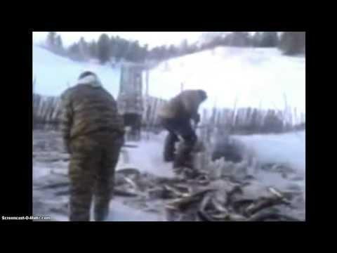 Зимняя рыбалка! Редкое видео!