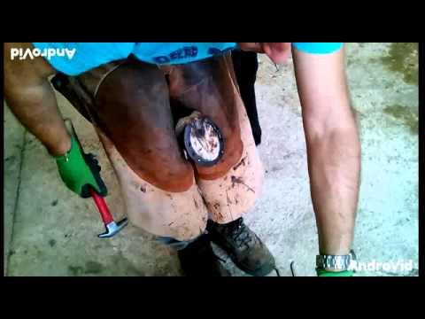 Ferratura Equide ( l'uomo che fa le scarpe ai Cavalli )