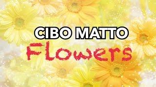 Cibo Matto- Flowers (sub español)