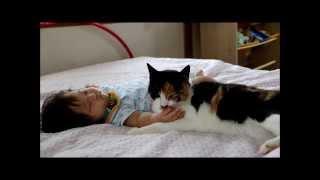 猫と5ヶ月の赤ちゃん 叩かれても舐めたいの