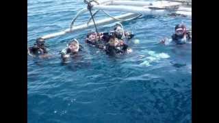セブ島・ダイビングショップ