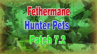 NEW Hunter Feathermane pets [ALL MODELS]│Patch 7.2│World of Warcraft Legion