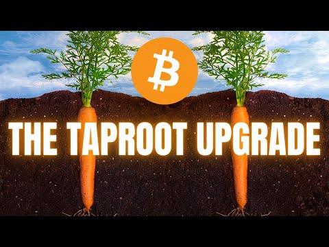 Pirkite microsoft office bitcoin