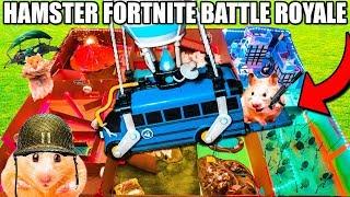 Hamster FORTNITE BATTLE Royale BOX FORT! 🐹