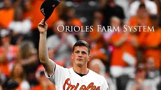 2020 Baltimore Orioles Farm System | Hype Video