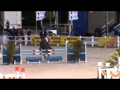 Belgian Championship 4Y old_2013