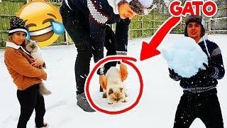 Para apoyar el canal ► http://www.patreon.com/DalasReview  Hoy fue la primera vez de mi gato (gata Mai) (que en realidad es de Lizy) en la nieve!! Y otras locuras super troll en la nieve muy gracioso todo y divertido xD  ¡MÍRAME EN DIRECTO! http://www.twitch.tv/DalasReview Tienda ► http://shop.bbtv.com/collections/dalas-review Canal Principal ► http://www.youtube.com/DalasReview  Instagram ► http://www.instagram.com/Dalasito Twitter ► http://www.twitter.com/DalasReview Facebook ► http://www.facebook.com/Dalas.Azahar