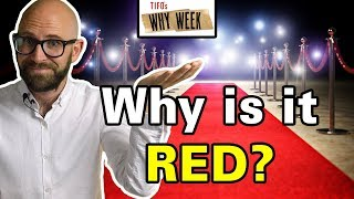 Why Week: Why Do Celebrities Walk on Red Carpet at Special Events?