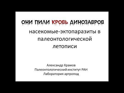 Православные храмы в московской области
