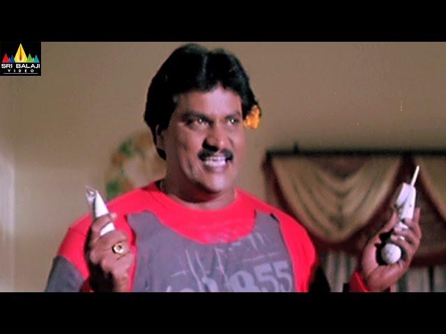 Andhrudu Movie Comedy Scenes Back to Back | Gopichand, Sunil | Sri Balaji Video