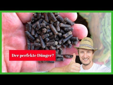 Ist das der perfekte Pflanzen Dünger? 🔴 Dünger im Check 2019 Teil 1