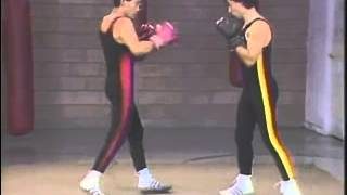 Mastering Savate 2 - Fundamental Techniques