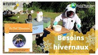 Bee'full stimulation : couvrir les besoins hivernaux en énergie et oligo-éléments