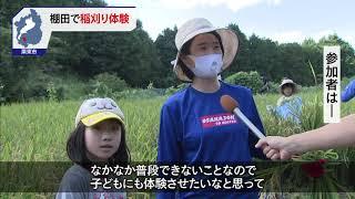 9月19日 びわ湖放送ニュース
